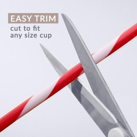Red & White Striped Straws 12 Pack